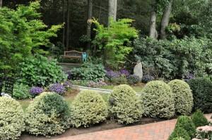 Ann Arbor Lawn Service Spring Cleanup